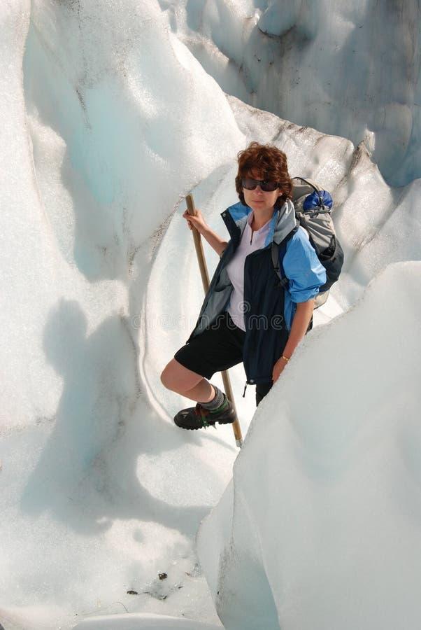 Fotvandra rävglaciären. arkivbild