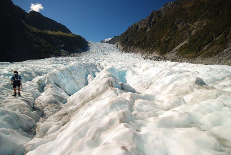 Fotvandra rävglaciären. royaltyfri bild
