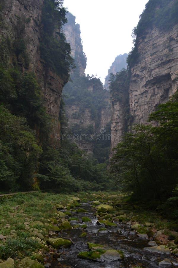 Fotvandra runt om parkera i Wulingyuan sceniskt område Varje Greenies arkivfoton