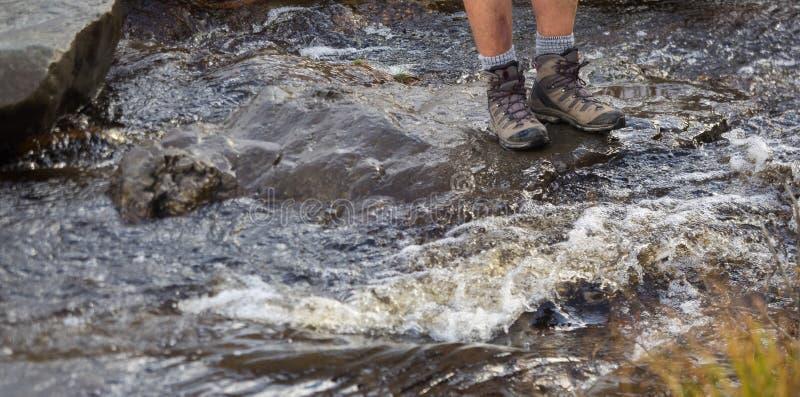 Fotvandra skor på fotvandraren som går utomhus korsningen flodliten vik royaltyfria foton