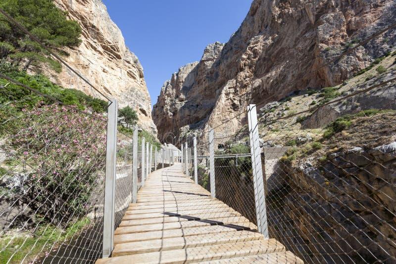 Fotvandra slingan El Caminito del Rey Malaga landskap, Spanien fotografering för bildbyråer