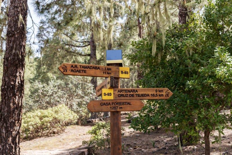 Fotvandra slingan i naturliga Tamadaba parkera i Gran Canaria royaltyfri fotografi