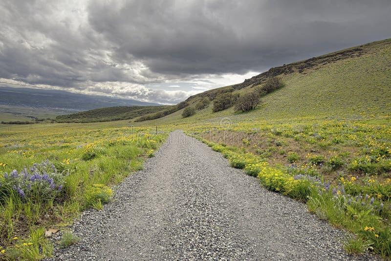 Fotvandra slingan på den Columbia Hills delstatsparken fotografering för bildbyråer