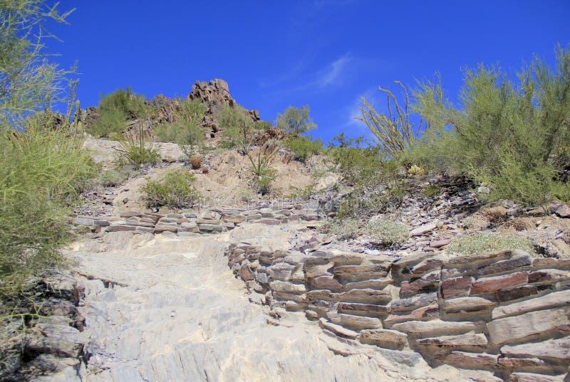 Fotvandra slingan på squawmaximumberget i Phoenix, AZ royaltyfri fotografi