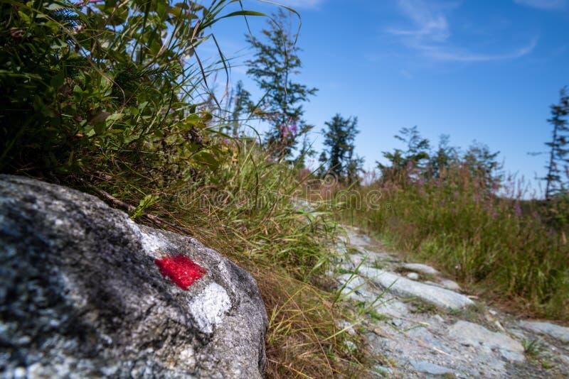 Fotvandra slingateckenfläcken målade på en vagga Ledande ho för bana den härliga bohemmet Forest National Park trekking royaltyfria bilder