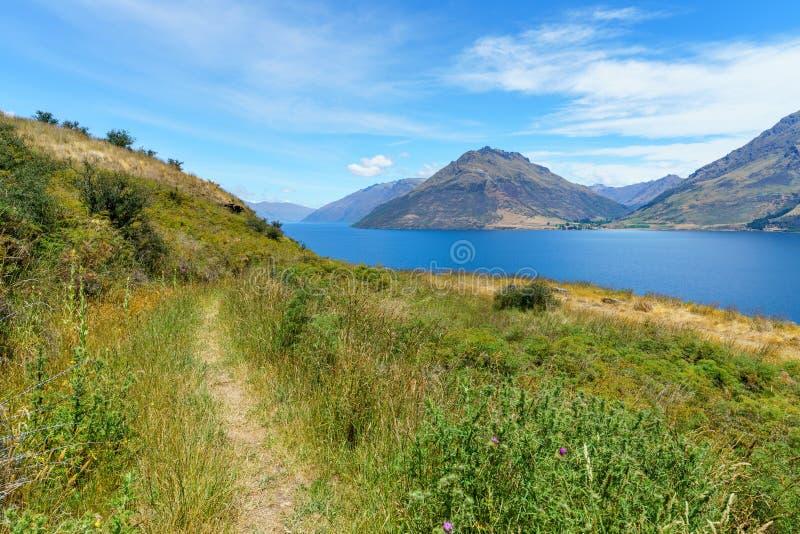 Fotvandra spåret för stålarpunkt med sikt av sjöwakatipuen, queenstown, Nya Zeeland 23 arkivbild