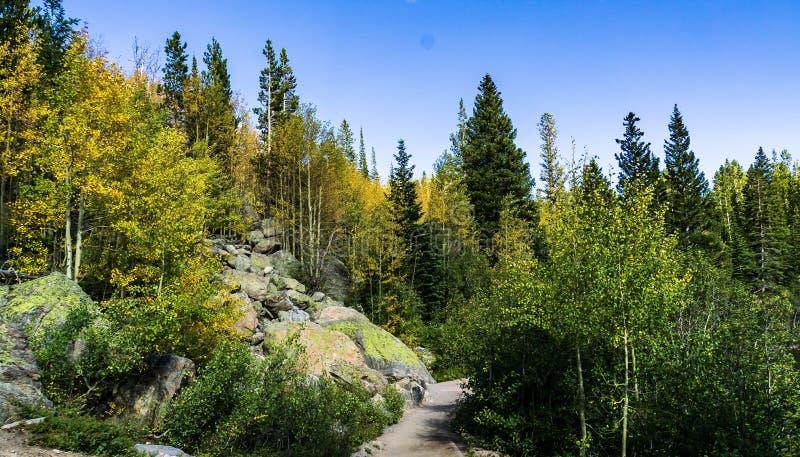 fotvandra trail för höst royaltyfri fotografi