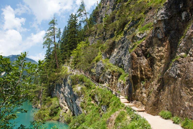 Fotvandra tril runt om Lago de Braies, Italien royaltyfri fotografi