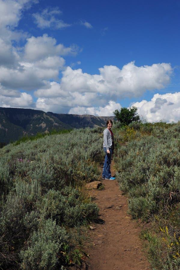 Fotvandra Yellowstone med kameran royaltyfria bilder