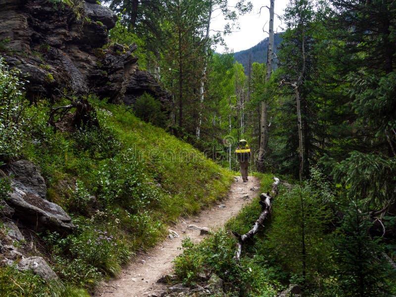 Fotvandrare på Rocky Mountain Trail i Colorado, Rocky Mountains National Park arkivfoton