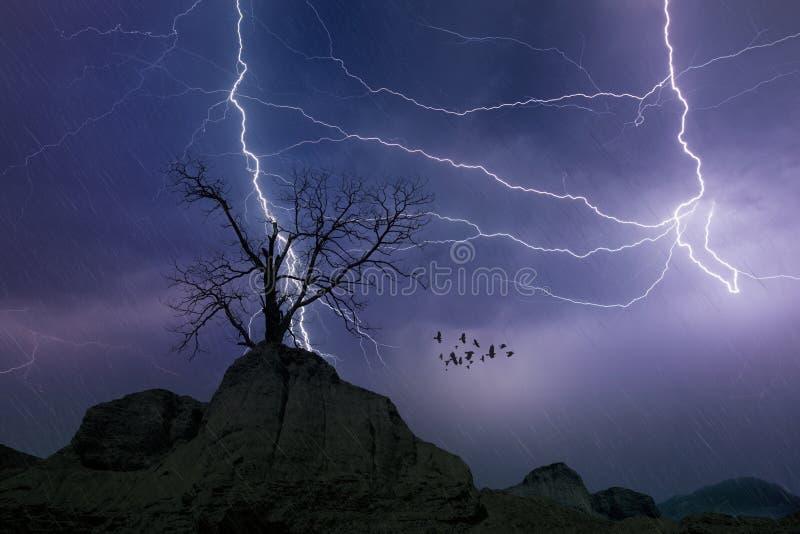 Foudres puissantes en ciel orageux foncé, concept de prévisions météorologiques photos stock