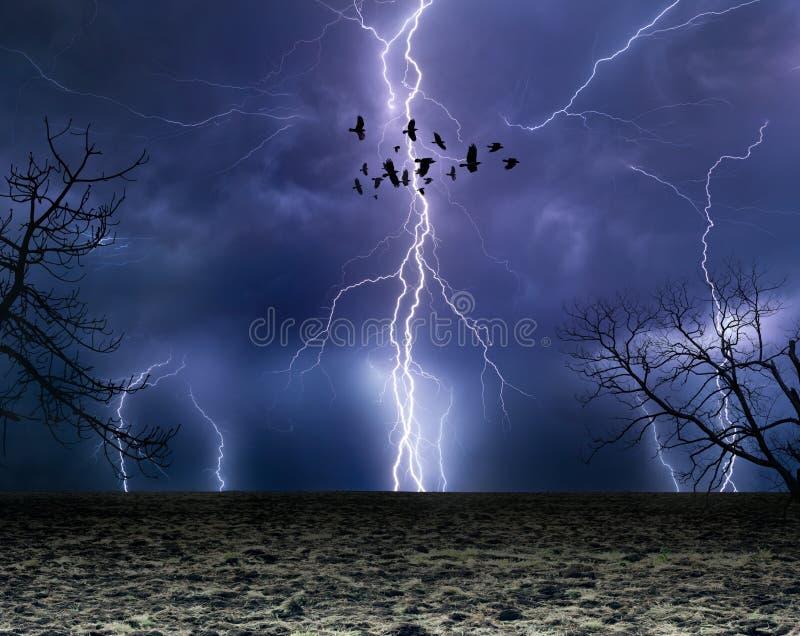Foudres puissantes en ciel orageux foncé, troupeau des corbeaux de vol, images stock
