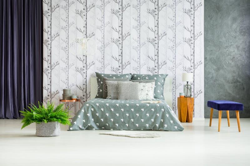 Fougère dans la chambre à coucher spacieuse image stock