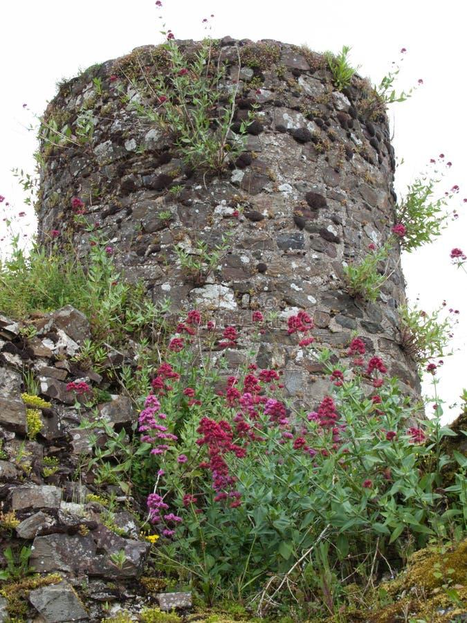 Fougeres城堡 免版税库存照片