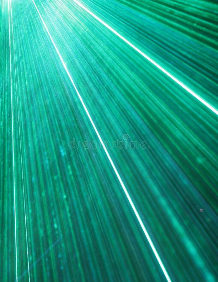 Foule de laser photographie stock
