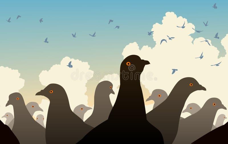 Foule de pigeon illustration libre de droits