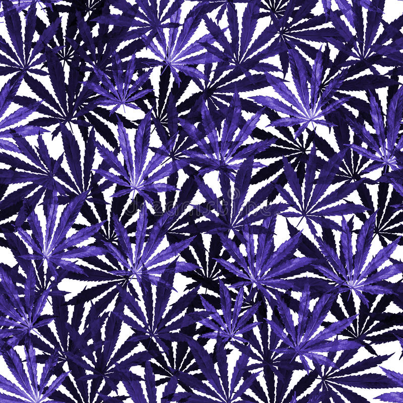 Foule des feuilles de cannabis sur le fond blanc illustration de vecteur