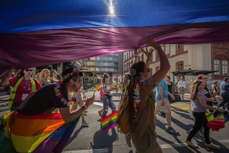 Foule des protestateurs se tenant sous un drapeau gai d'arc-en-ciel géant pendant Belgrade Gay Pride photos libres de droits