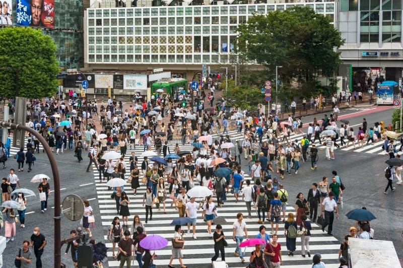 Foules des touristes et des gens du pays sur le croisement célèbre de Shibuya dans Toky images libres de droits