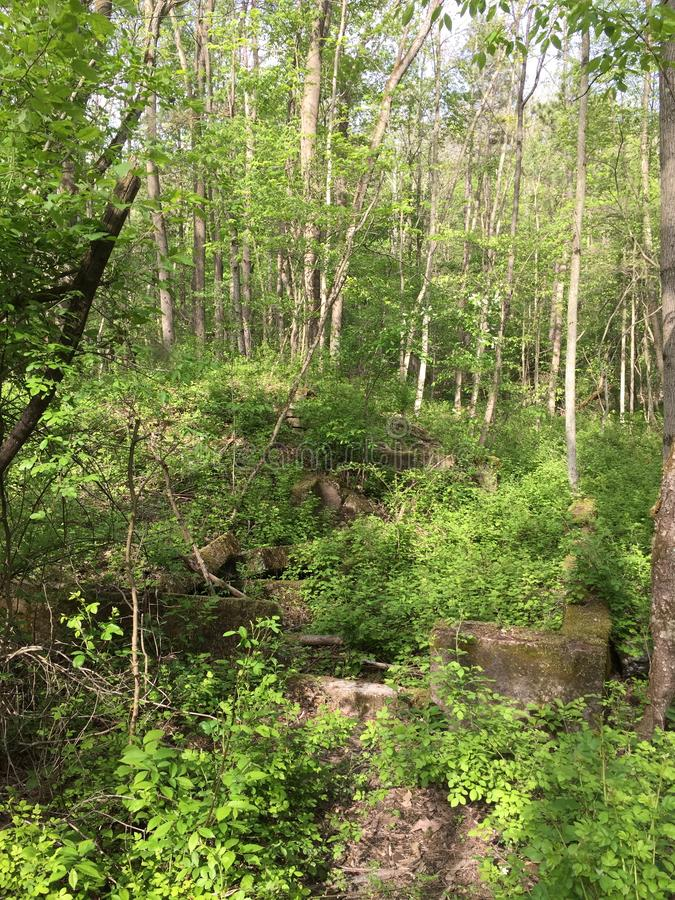 Foundation on Hidden Waterfall Trail, Belfast NY royalty free stock photography