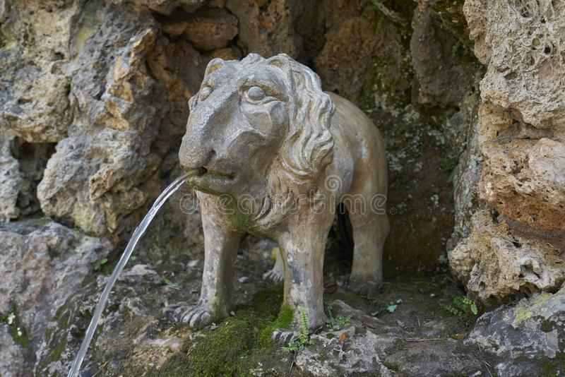 Unusual fountain in the form of a stone lion stock photos