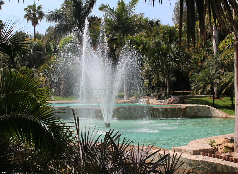Fountain with palm trees stock images
