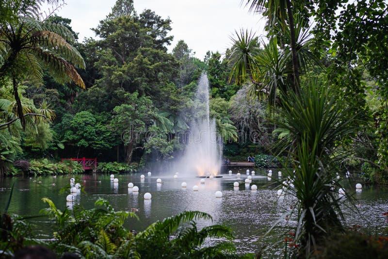 Fountain in Pukekura Park, New Plymouth New Zealand. Beautiful fountain in public park, festival of lights in New Plymouth, Taranaki, New Zealand royalty free stock image