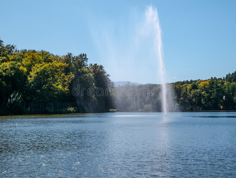 Fountain spraying water against the background of forest. And clear sky royalty free stock photo