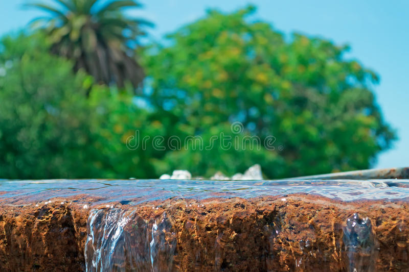 Fountain and trees stock photography