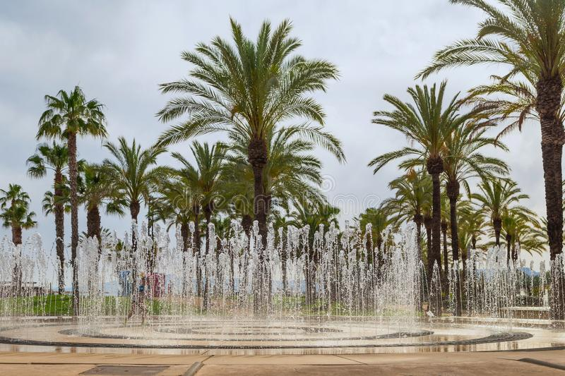 Fountains against the palm trees of the Spanish resort of Salou. stock photo