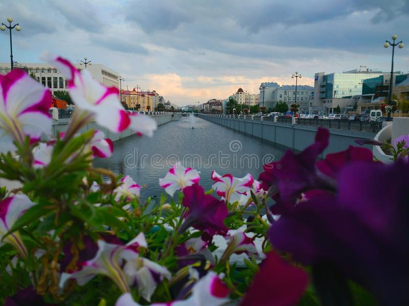 Fountains on the river in Kazan in beautiful flowers stock images