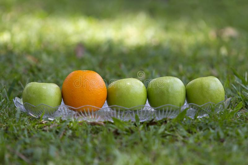 Four apples and an orange on a tray stock images
