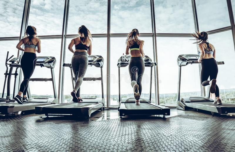 Four attractive young sports women is working out in gym. royalty free stock photo