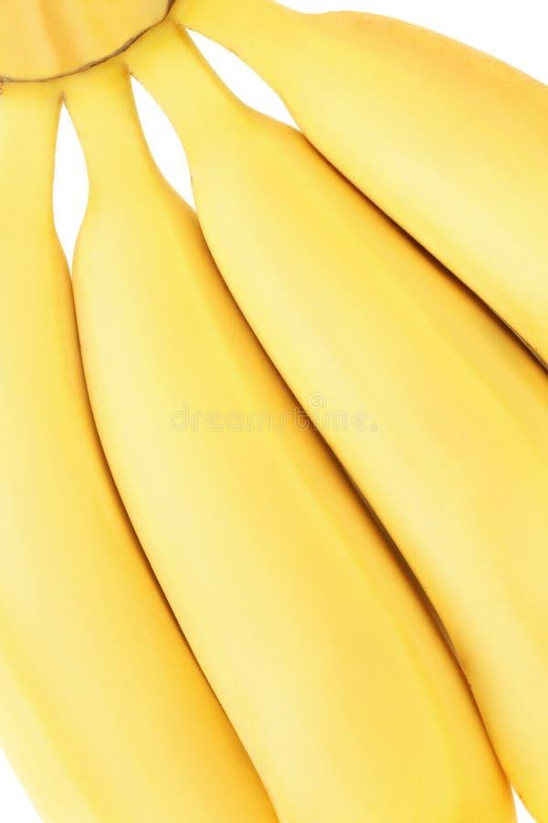 Download Four banana stock image. Image of healthy, fruit, dessert - 14171561