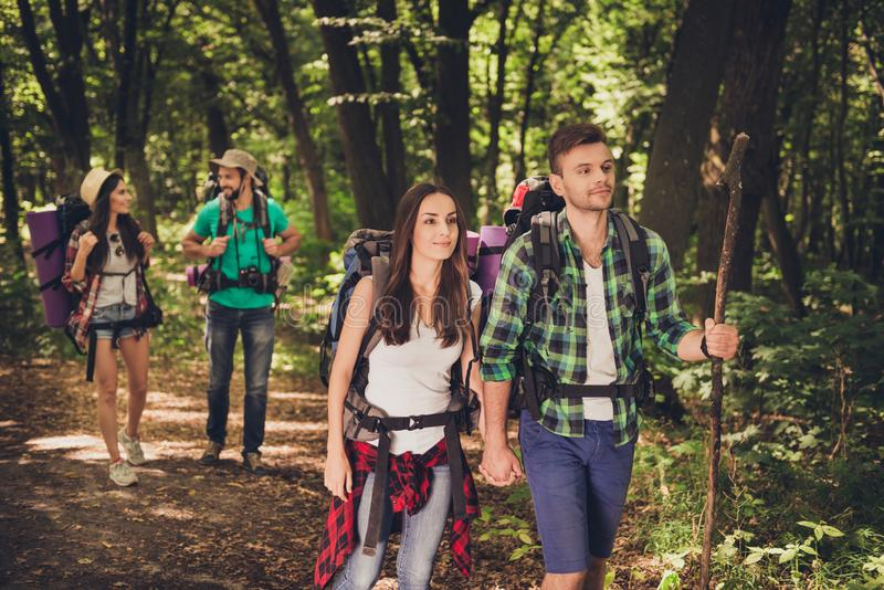 Four best friends are walking in autumn forest, amazed by the beauty of nature, wearing comfortable outfits for hiking, sneakers, stock image