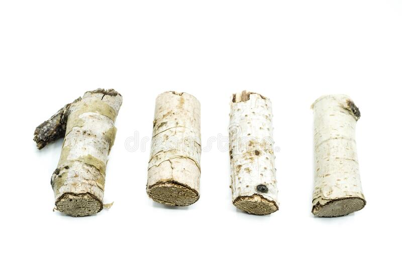 Four birch branch pieces isolate on white background royalty free stock photo