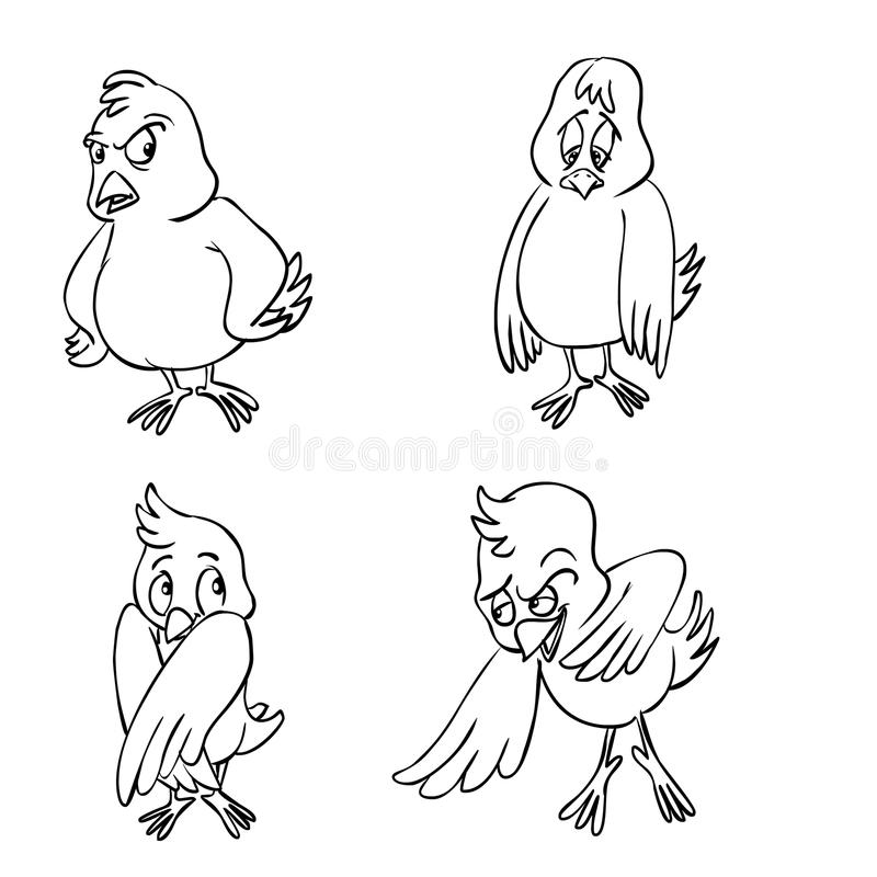 Four birds character. Four cartoon birds with different emotions and character vector illustration