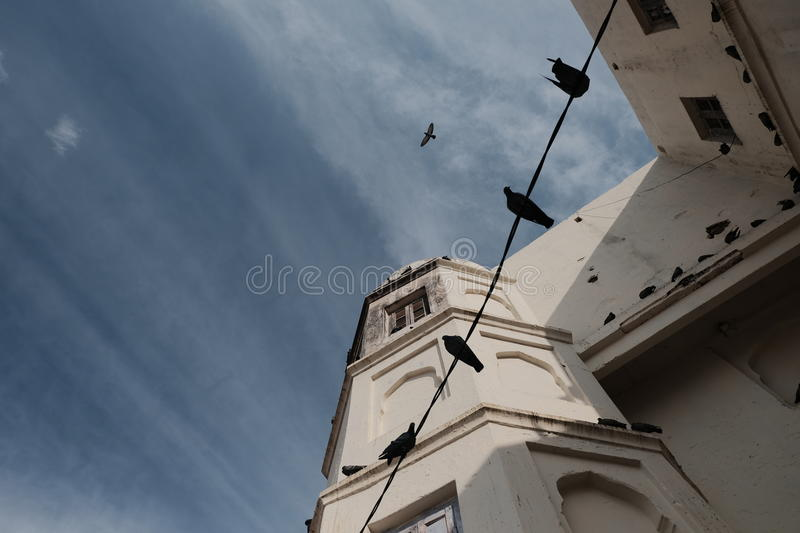 Four birds sitting on the wire. Against the white old building and blue cloudy sky stock image