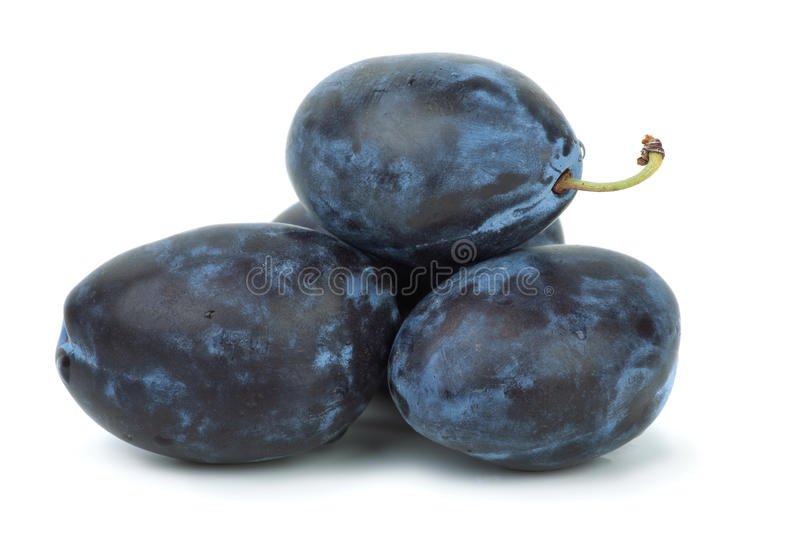 Four Blue Plums Royalty Free Stock Image