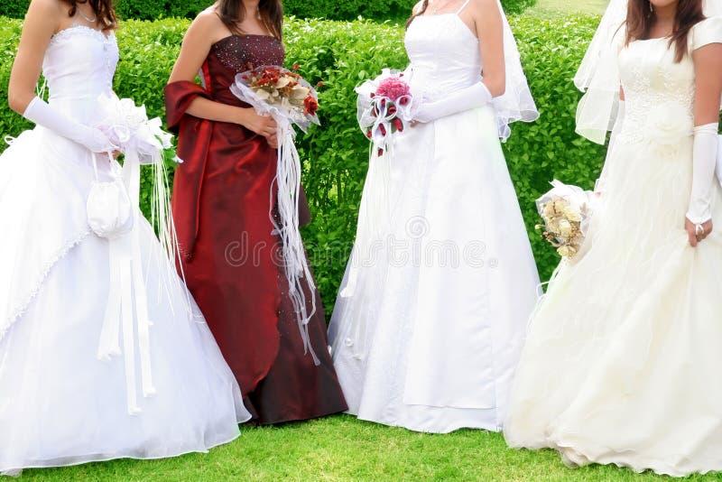 Four brides in wedding dress stock photos