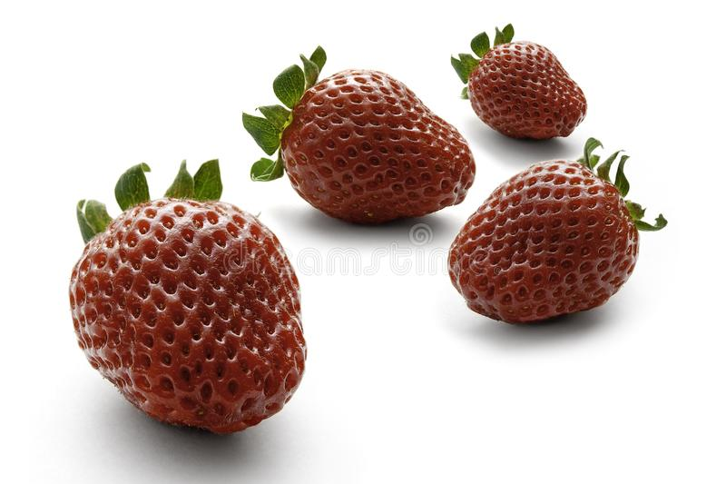 Four bright red strawberries on a white background stock photos