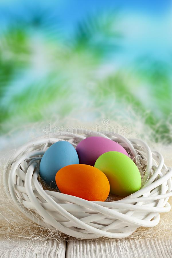 Four colored Easter eggs in white nest on wooden table and nature background stock photo