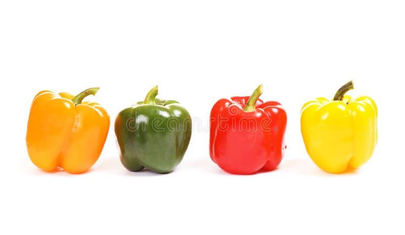 Four colorful paprikas stock image