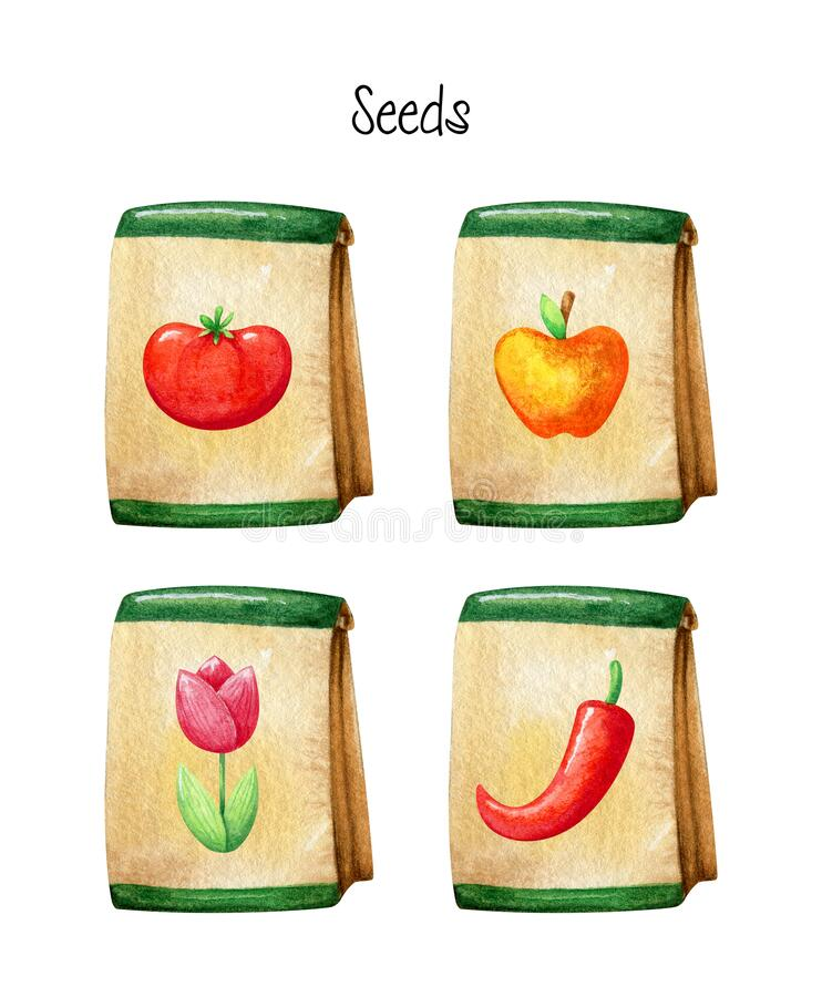 Four craft packaging for seeds. Hand painted watercolor elements isolated on white background stock photography