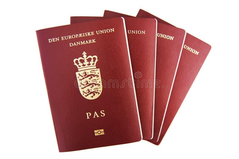 Four danish passports royalty free stock photography