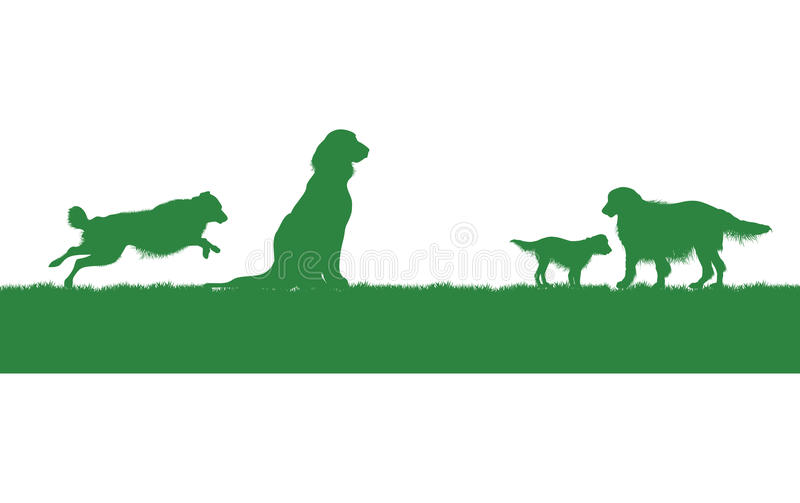 Four dogs on a grass image
