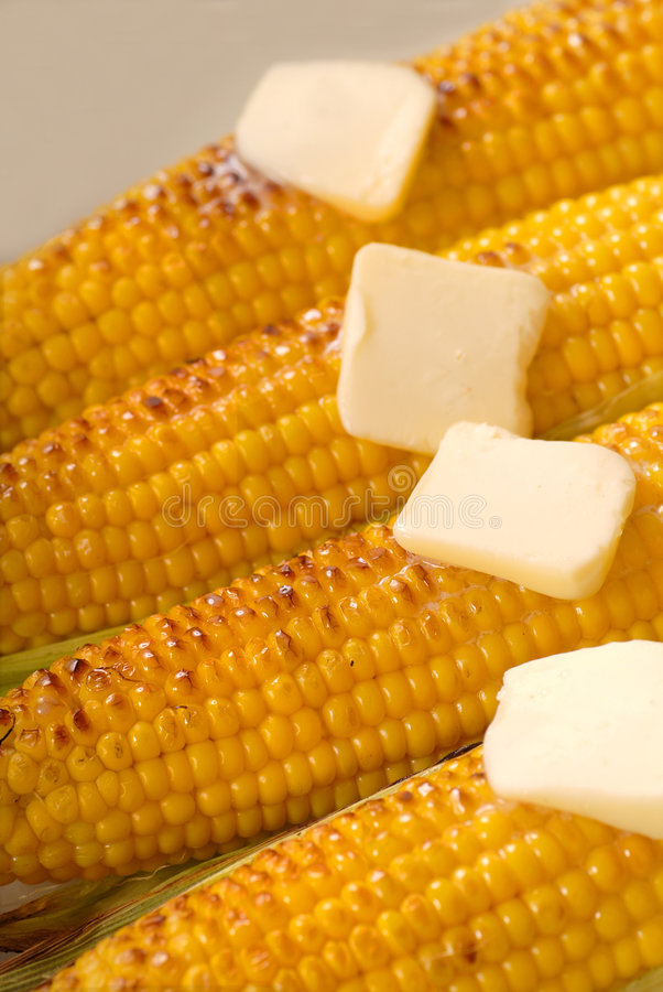 Four ears of roasted corn stock image