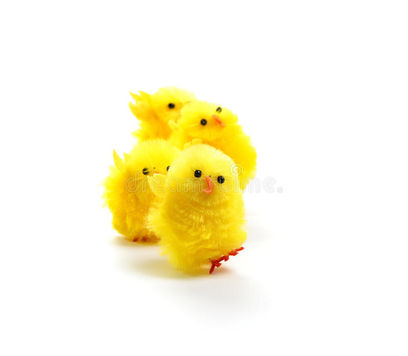 Four easter chickens royalty free stock photos