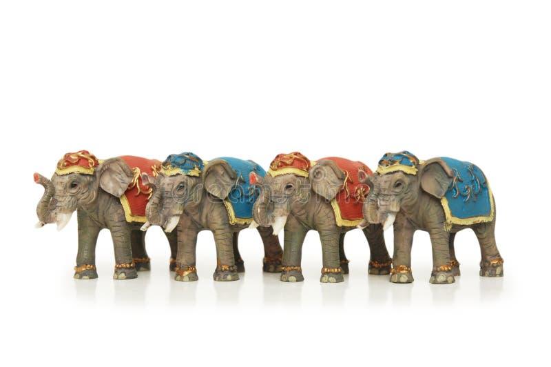 Four elephants isolated stock photography