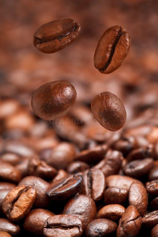 Four falling coffee beans stock photos